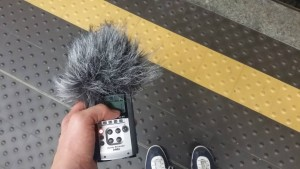 Field recording in Hamburg