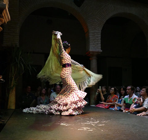 Flamenco at Museo del Baile Flamenco.