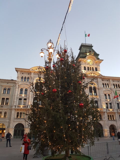 Trieste at Christmas