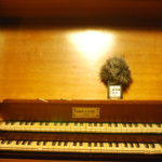 The beauty of four organs